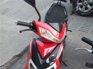 九成新 爱玛电动摩托车