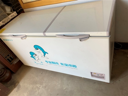 出售饭店专用大冰箱一个,9成新。