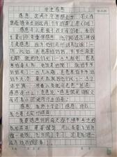 """2019""""外国语杯""""杞县学生作文大赛-020赵冉冉"""