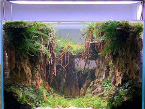 大自然景觀設計水族館