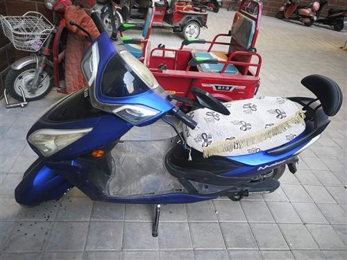 爱玛电动车,去年3月买的,一口价1500元