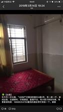 一房一厅,单间出租