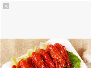 批發零售招代理,麻辣小龍蝦,加熱即食的香辣小龍蝦