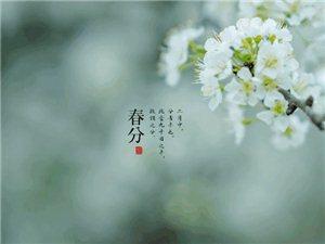 《春分》2019・3・21――己亥春分春光明媚鸟语香,移花接木燕北上。草长莺飞麦节长,