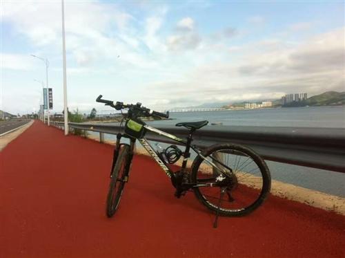 美麗達自行車轉賣有意者可以聯系我電話17888648695