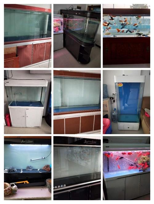 魚缸  轉賣二手魚缸  因店內布置緊湊 現轉走一批大魚缸(有大有小)保證使用良好,無殘缺,給錢就賣...