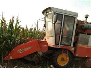 巨明玉米收割机    小三行