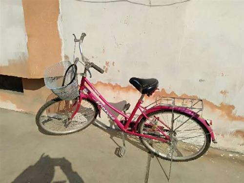 轉讓自行車?? 一輛,26的,女式的,八成新,價格面議,電話:15022891606