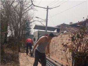 专业卖砖 送货上门  价格合理