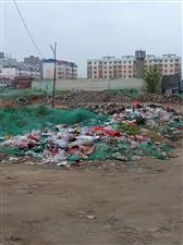 禁止乱倒垃圾的大美金沙平台网址,为何这里垃圾成山无人管?
