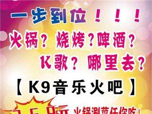 【K9音乐火吧】吃喝玩唱一步到位,惠动凤翔!