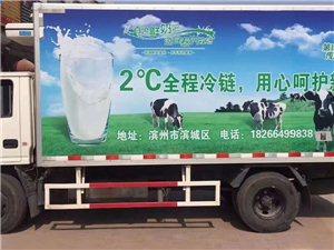 滨州市奶牛场,鲜奶销售,直供鲜奶吧