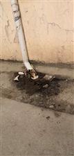 金沙平台网址第二人民医院旁的臭水谁来管?