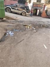 商贸街道背后路口垃圾池太臭太脏