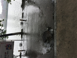 沿湖路井盖污水横流