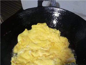 出售本地土鸡蛋