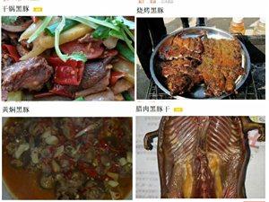 南耘養殖場黑豚竹鼠、長期供應歡迎各酒店農莊燒烤店