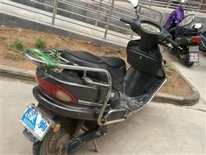 本人有绿驹电动车、大运三轮摩托车出售,有意者电联 15191391286 吕,价格面议