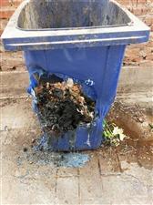 垃圾桶有什么错