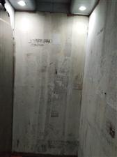 电梯里孤单的小广告