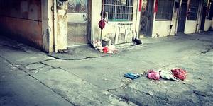 这里的垃圾龙南县环保局无人管,直接影响了市民环境生活。
