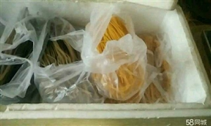 转让一台粗粮自熟面条机(朝?#19990;?#38754;,东北钢丝面,米线, 年糕等) 本机器买来用了一个多月,可生产玉米,...