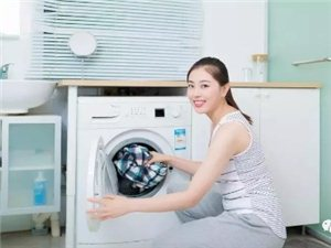 長期不清洗的洗衣機,槽內將細菌成災