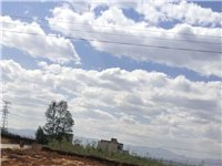 宅基地出售 董家铺子原大堰塘路边 出售宅基地 离双河中学 500米 打井水好 通电电线就在路边 地基...