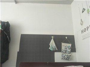 杨柳小区后边1室 0厅 0卫330元/月