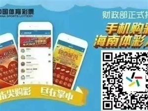 海南体彩官方手机购彩