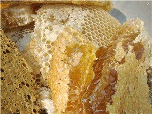 西双版纳野生蜂蜜