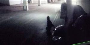 广高新城小区地库车辆被撬,财务被盗!