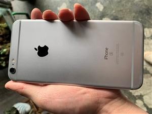 自己用的苹果6sp。买了xr 闲置的6sp便宜出。成色非常不错 就是后摄像头拍照有点花 不介意的拿去...