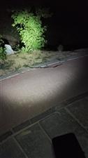 晚上散步请注意安全!请远离黑暗!