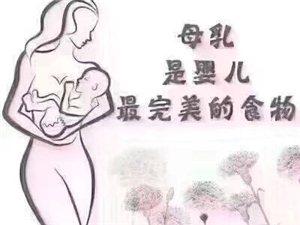 华华催乳通乳