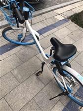 哈喽单车收禁区停车费