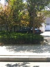 这人停车停的也太不是地方了
