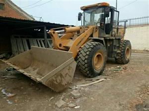去年二手装载机柳工50龙工30个人铲车出售