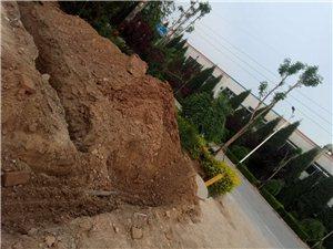 冀州镇南王庄村北街口,因修建公园,5月9号下午3点左右,把天燃气管道破坏了,己报修,市长公开电话都打