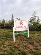 禁止公园遛狗