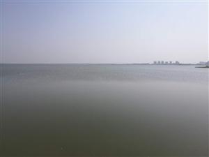 吉美北边的湖里有人捕鱼,明令禁止的不让捕鱼,居然还有人顶风犯法