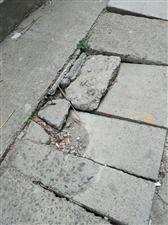 水果街老电石厂宿舍路面破旧不堪,无人管