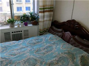 青年小区2室 1厅 1卫20万元