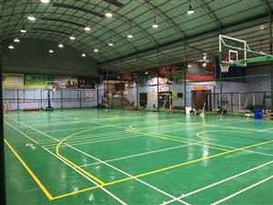 青少年篮球培训