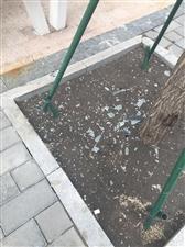 公共设施应保护