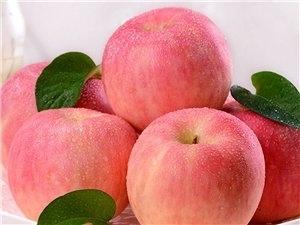 隰县红富士苹果85#起步12颗装