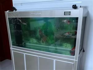 出售底过滤鱼缸,尺寸:1500*450*1600,原价:3400元,有意者联系我1357340432...