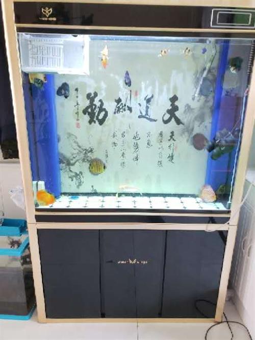 出售此鱼缸,不漏水,没有补过,使用两年换了新的,这个出了,可以随时来看,底部过滤,原价1600现低价...