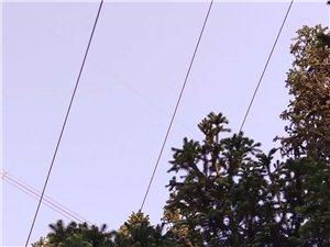 电力存在重大安全隐患无人处理