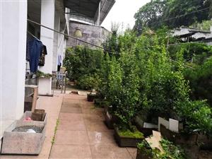 房子出租,县医院上面环城路租房,两室带花园